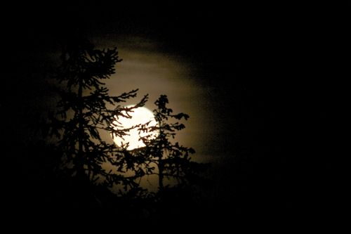 full moon essay From the title, we can gather that the poem will involve a full moon little frieda refers to his daughter the fact that the word little is used.