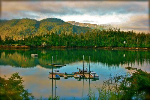 Photo Essay Peterson Bay Alaska Gt Gt Raise Your Family