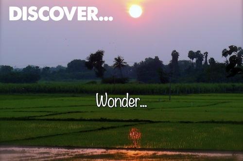 Discover Wonder...