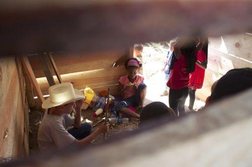 Pig Pen & Nesting Boxes - 18